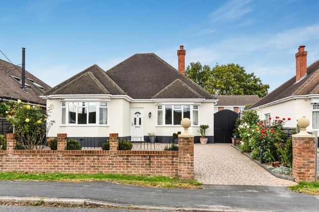 Thumbnail Detached bungalow for sale in Bell Lane, Blackwater Gu16