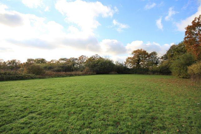 The Setting of Pledgdon Green, Henham, Bishop's Stortford, Hertfordshire CM22