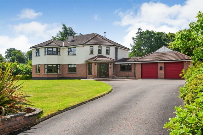Thumbnail Detached house for sale in Ballynorthland Park, Dungannon, County Tyrone