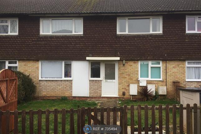 Thumbnail Flat to rent in Pinkerton Road, Basingstoke