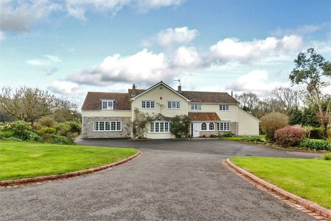 Thumbnail Detached house for sale in Stone Allerton, Axbridge, Somerset