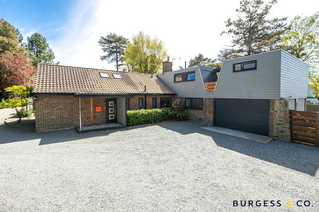 Thumbnail Detached bungalow for sale in Birchington Close, Bexhill-On-Sea