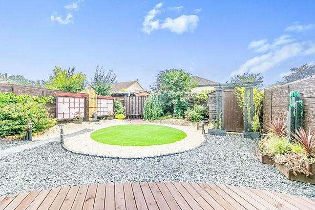 Thumbnail Semi-detached bungalow for sale in Chinook, Highwoods, Colchester