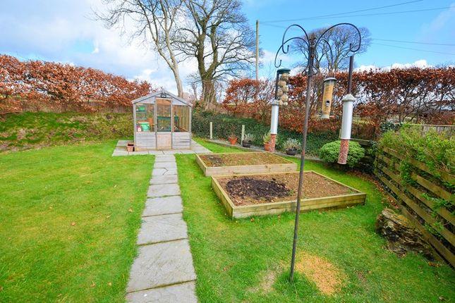 Garden-(2)-Psp of Mill Hill Lane, Tavistock PL19
