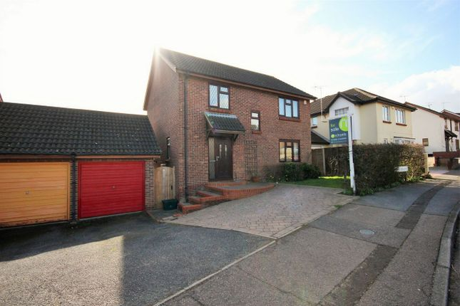 Thumbnail Detached house for sale in Egret Crescent, Colchester, Essex