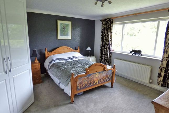 Photo 12 of Dinghouse Wood, Buckley CH7