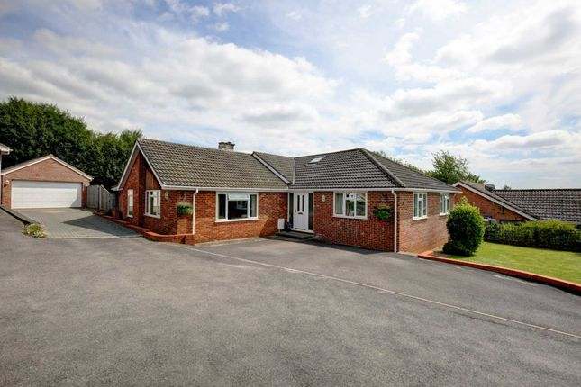 Thumbnail Detached bungalow for sale in Coach Ride, Marlow