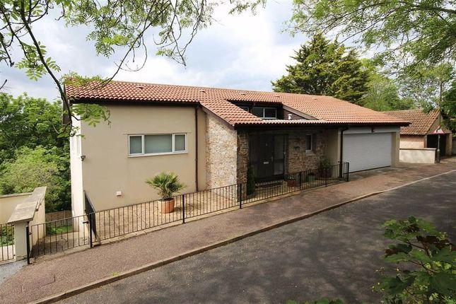 Thumbnail Detached house for sale in Parkham Lane, Central Area, Brixham