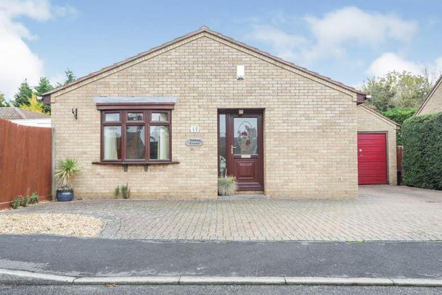 Thumbnail Bungalow for sale in Sutton, Ely, Cambridgeshire
