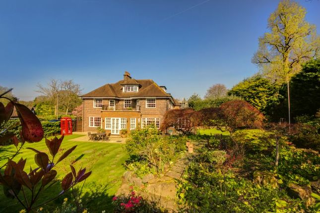 Thumbnail Property for sale in Pond Road, Hook Heath, Woking