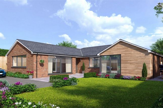 Thumbnail Detached bungalow for sale in Willow Bank Road, Alderton, Tewkesbury