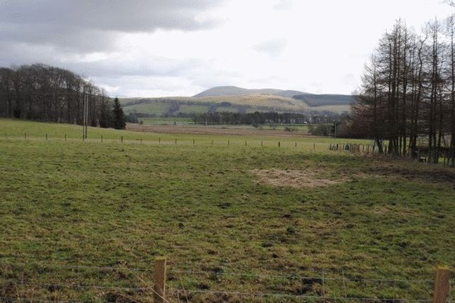 Thumbnail Land for sale in Biggar