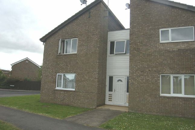 Thumbnail Studio to rent in Maplewood Avenue, West Hull, Hull