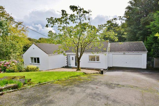 Thumbnail Detached bungalow for sale in Ellerbeck Close, Workington
