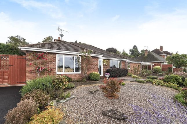 Thumbnail Detached bungalow for sale in North, Hereford