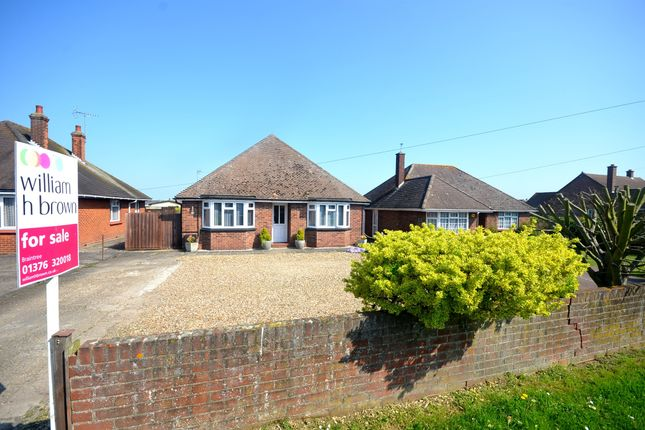 Thumbnail Detached bungalow for sale in Coggeshall Road, Braintree