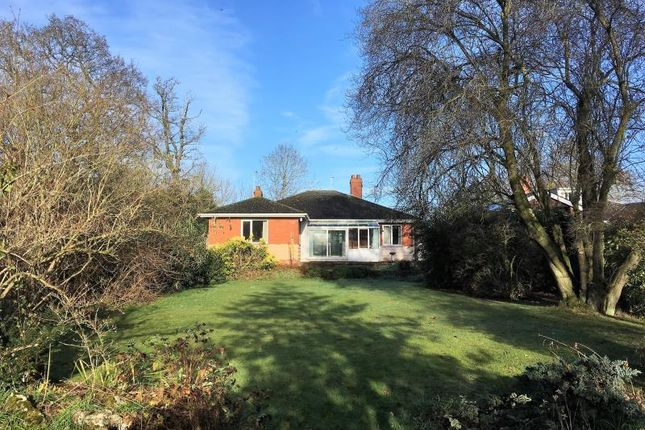 Thumbnail Detached bungalow for sale in Staplegrove Road, Taunton, Somerset