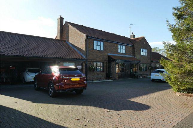 Thumbnail Detached house for sale in Park Lane, Downham Market