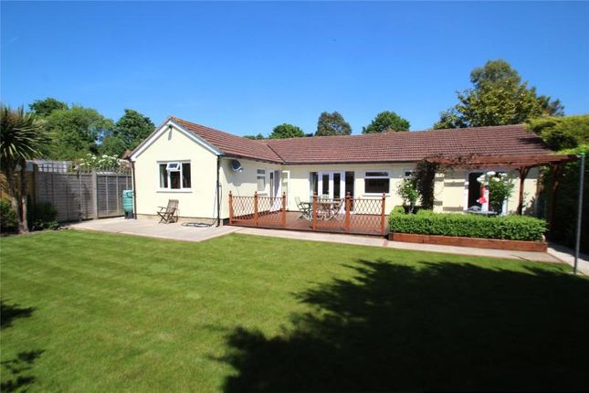 Thumbnail Detached bungalow for sale in Findon By Pass, Findon, Worthing
