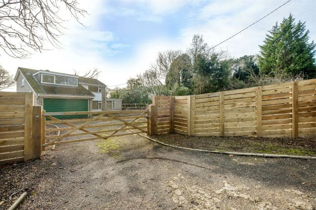 Thumbnail Detached house for sale in Mill Common, Huntingdon