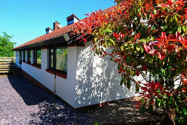 Thumbnail Bungalow to rent in Cog Road, Sully, Penarth