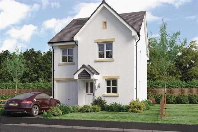 "Thumbnail Detached house for sale in ""Blair"" at Red Deer Road, Cambuslang, Glasgow"