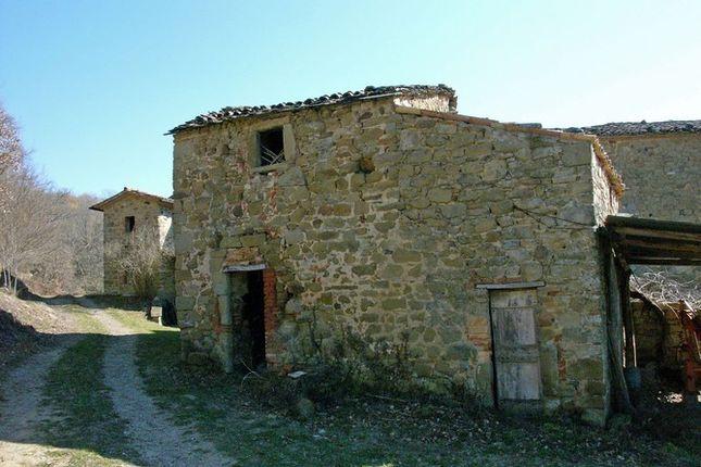 Out Building of Carpina, Trestina, Umbria