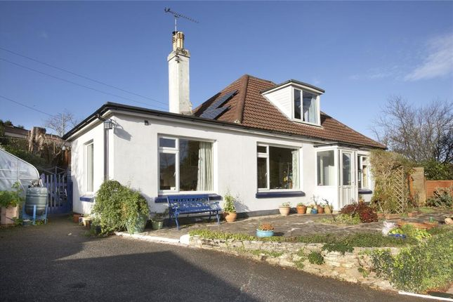 Thumbnail Semi-detached bungalow for sale in New Road, Stoke Gabriel, Totnes