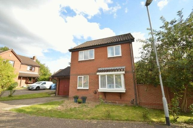 4 bed link-detached house to rent in Layer Close, Norwich