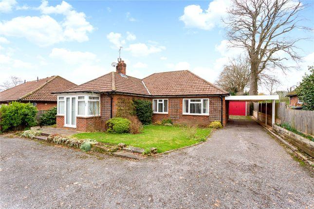 Thumbnail Detached bungalow for sale in The Avenue, Liphook, Hampshire