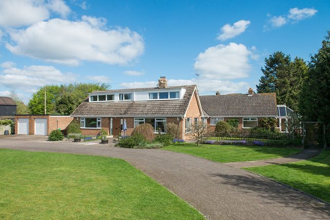 Thumbnail Detached bungalow for sale in Clifton, Severn Stoke, Worcester