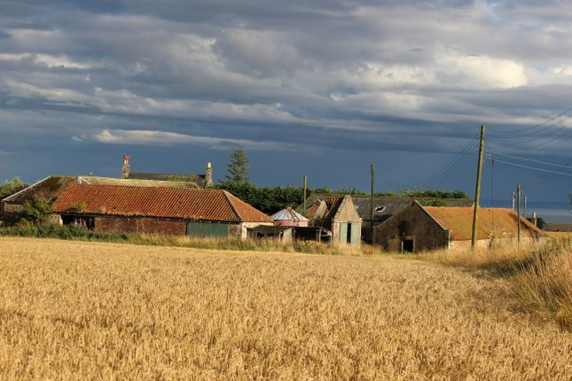 Steading Buildings From The North West