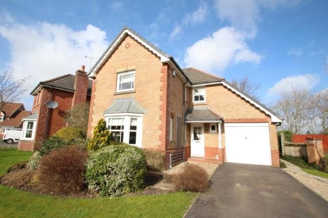 Thumbnail Detached house for sale in Deaconsbank Gardens, Thistlebank
