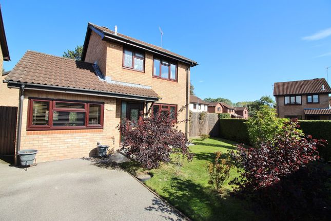 Thumbnail Detached house for sale in The Newlands, Mardy, Abergavenny