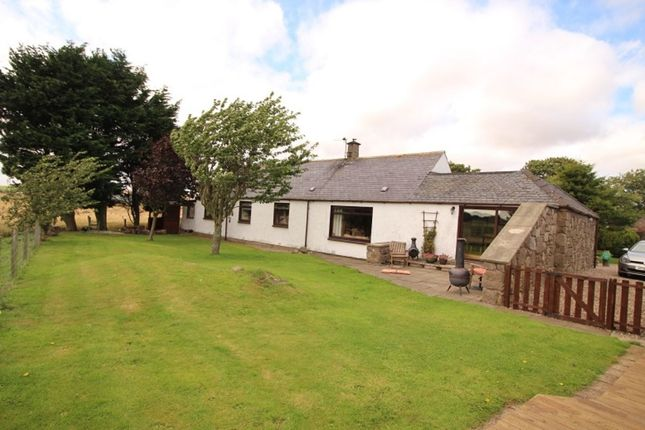 Thumbnail Bungalow to rent in Inverkeilor, Arbroath