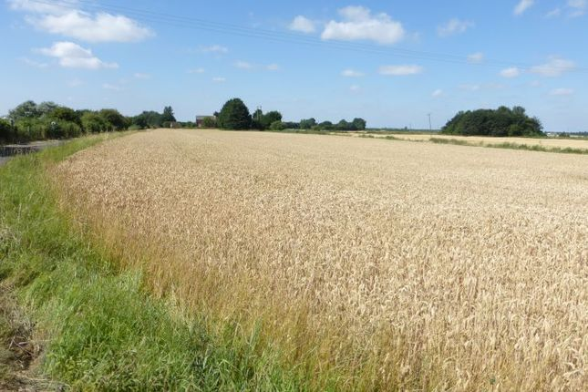 Thumbnail Land for sale in Agricultural Land Off, Wards Chase, Stow Bridge, King's Lynn, Norfolk