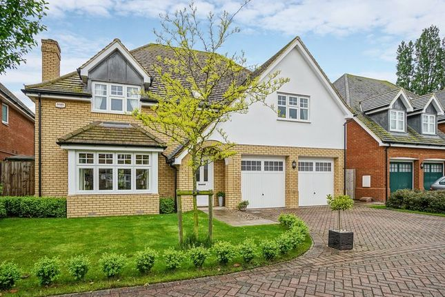 Thumbnail Detached house for sale in The Brambles, Great Barford, Bedford