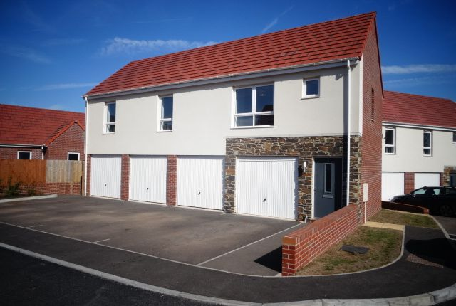 Thumbnail Property to rent in Staddle Stone Road, Exeter