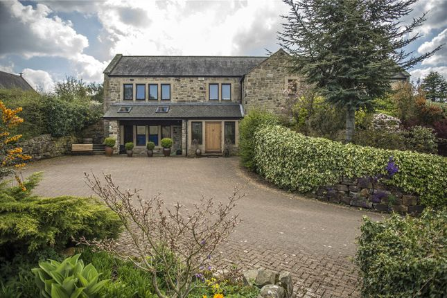 Thumbnail Detached house for sale in Cotherstone, Barnard Castle, County Durham