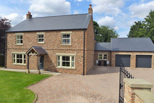 Thumbnail Detached house for sale in Maythorpe Gardens, Sharow, Ripon