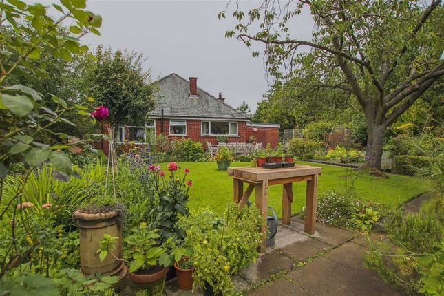 Thumbnail Detached bungalow for sale in Butterworth Brow, Chorley, Lancashire