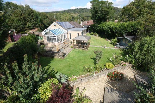Thumbnail Detached bungalow for sale in Hillside Close, Brockham, Betchworth