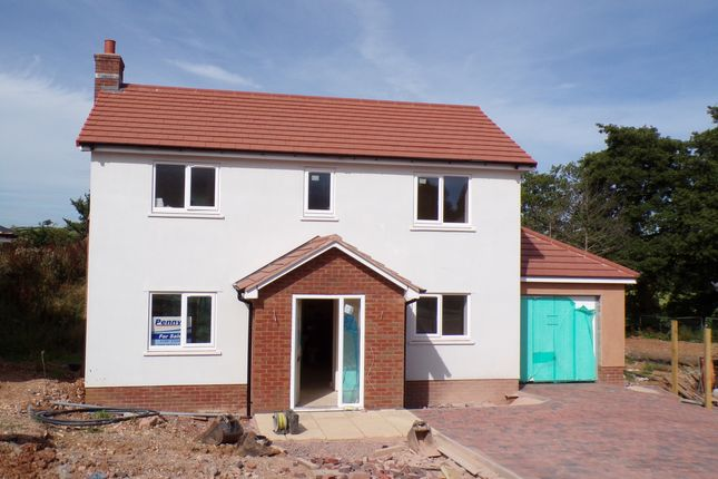 Thumbnail Detached house for sale in Coly Road, Colyton