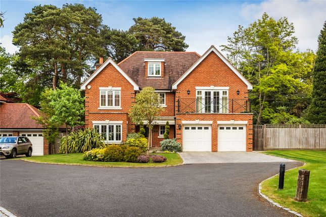 Thumbnail Detached house for sale in Hook Heath/St Johns Borders, Surrey