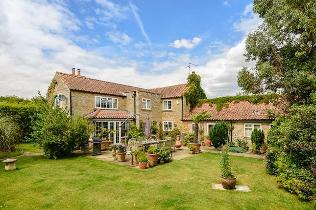 Thumbnail Detached house for sale in Holywell Road, Aunby, Rutland