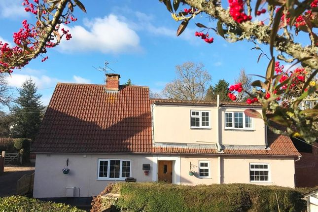 Thumbnail Link-detached house for sale in West Hill Road, West Hill, Ottery St. Mary