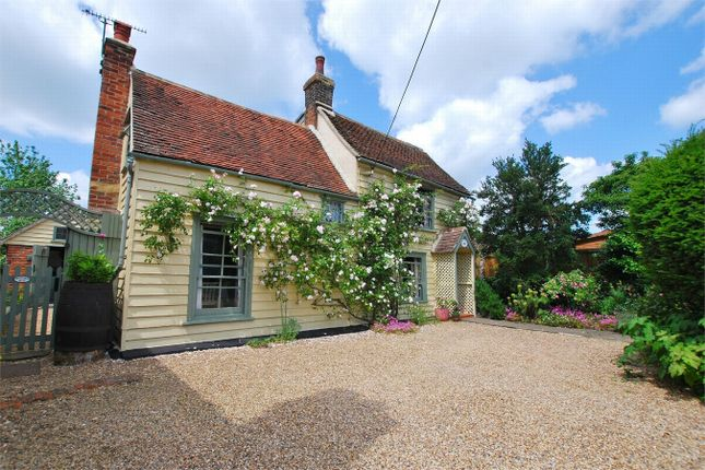 Thumbnail Detached house for sale in Maldon Road, Tiptree, Essex