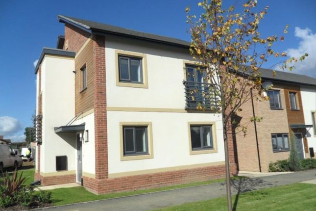 Thumbnail Detached house to rent in Hawksbill Way, Peterborough