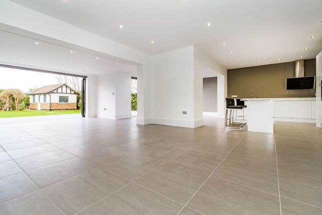 Thumbnail Detached house to rent in Hornbeam Lane, London