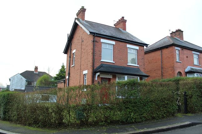 Thumbnail Detached house to rent in Holland Crescent, Belfast